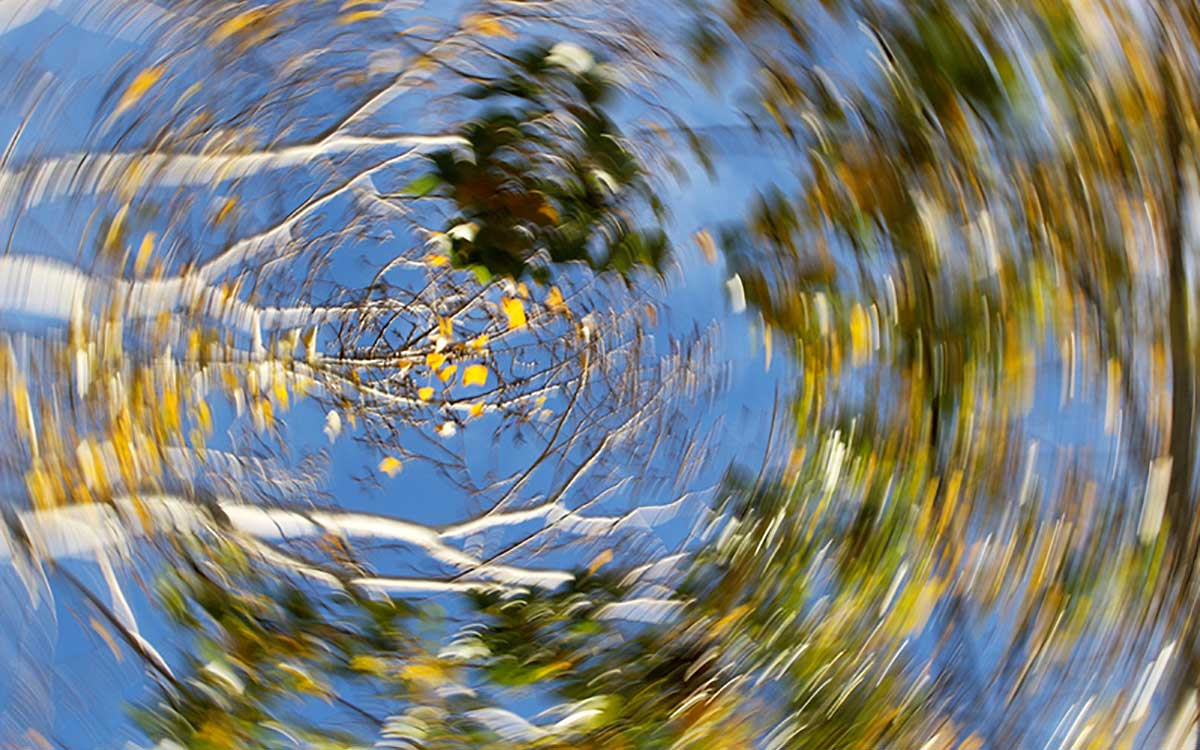 Picture of swirling trees | What Causes of Dizziness, Vertigo and Poor Balance