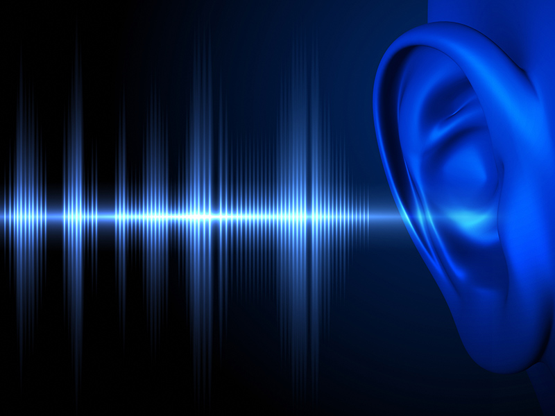 Picture of an ear | What You Should Never Do to Your Ears