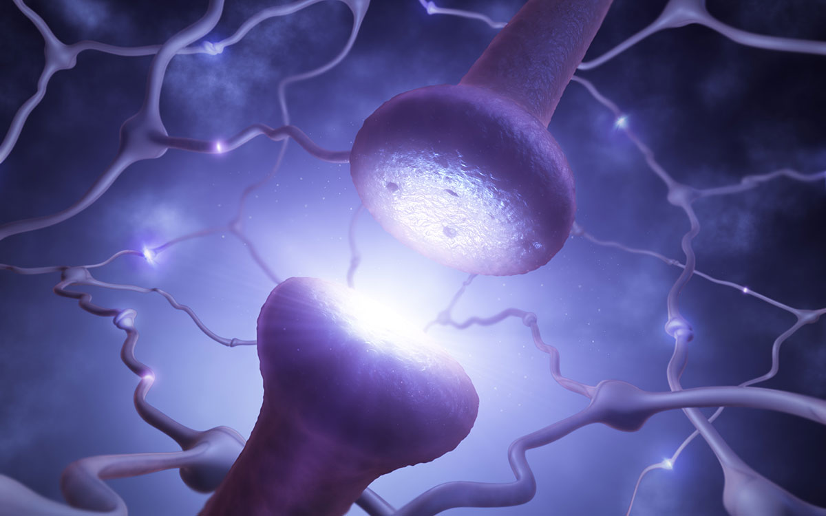 Brain nerve ending affected by hearing loss.